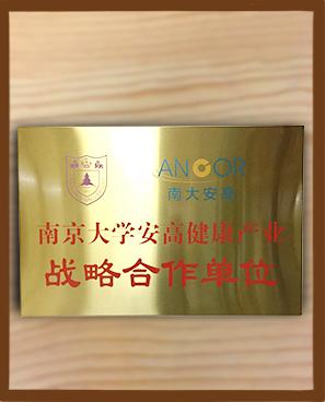 南京大学安高集团
